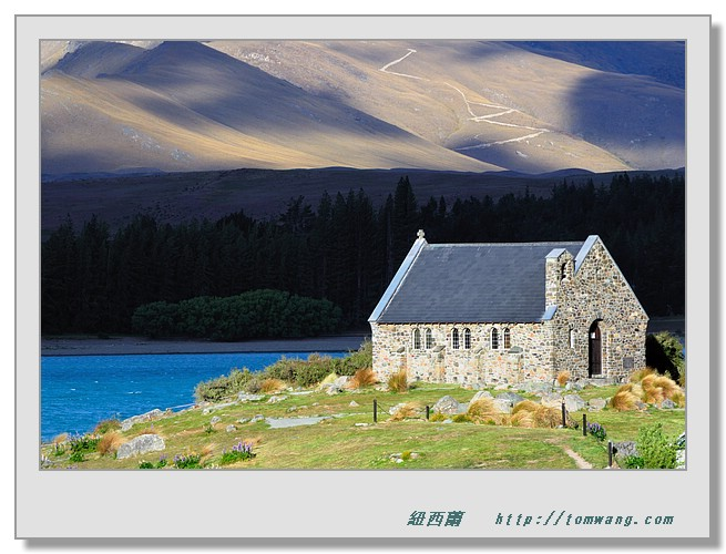 奇異果的故鄉--紐西蘭